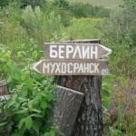 SEO продвижение сайтов или IT бизнес в Мухосранске